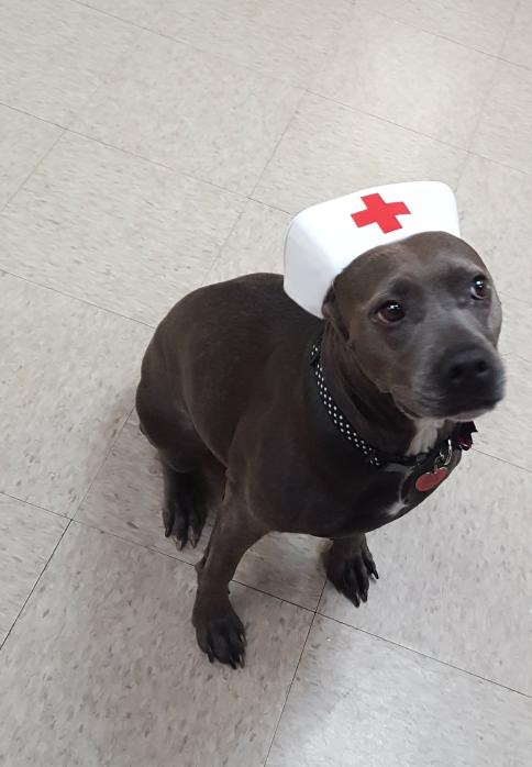 NurseShera.png